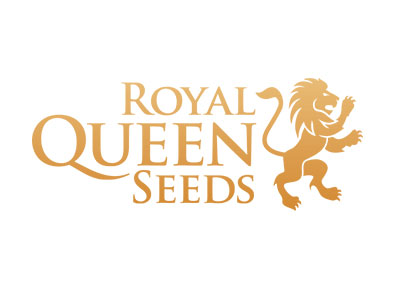 Banco semillas marihuana - Royal Queen Seeds